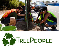 Image result for tree people organization